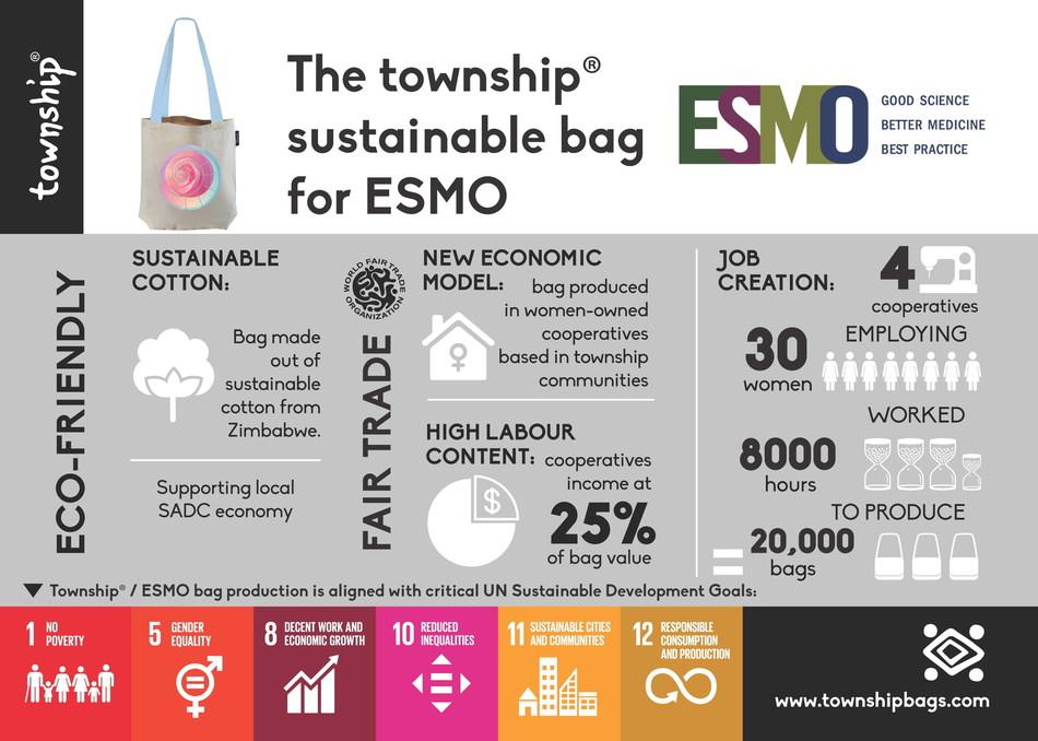 ESMO Township Patterns (PRNewsfoto/ESMO)