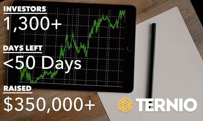 Ternio investment metrics