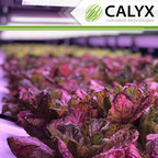 American Manufacturer Presents AI Patented Technology for Indoor Farming