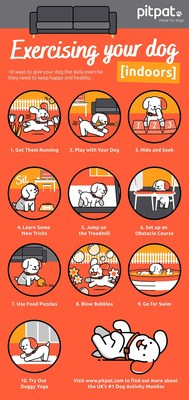 PitPat Dog Activity Monitor Infographic - 10 ways to exercise your dog indoors