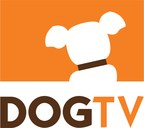 Dogstar - Your Dogs.  Your Video. On DOGTV!