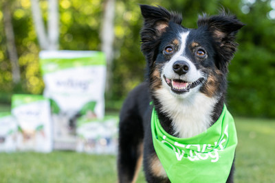 V-dog, a leading vegan pet food provider since 2005, was named Best Vegan Dog Food in the 20th annual VegNews Veggie Awards this month.