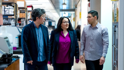 Gladstone researchers Jae Kyu Ryu, Katerina Akassoglou, and Andrew Mendiola developed a novel method to profile toxic immune cells in the brain, and used it to identify a therapeutic target for multiple sclerosis.