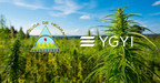 Youngevity International, Inc (Nasdaq:YGYI) Completes Joint Venture in Nicaragua for Large Scale Processing Facility and 2200 Acres of Hemp Grow