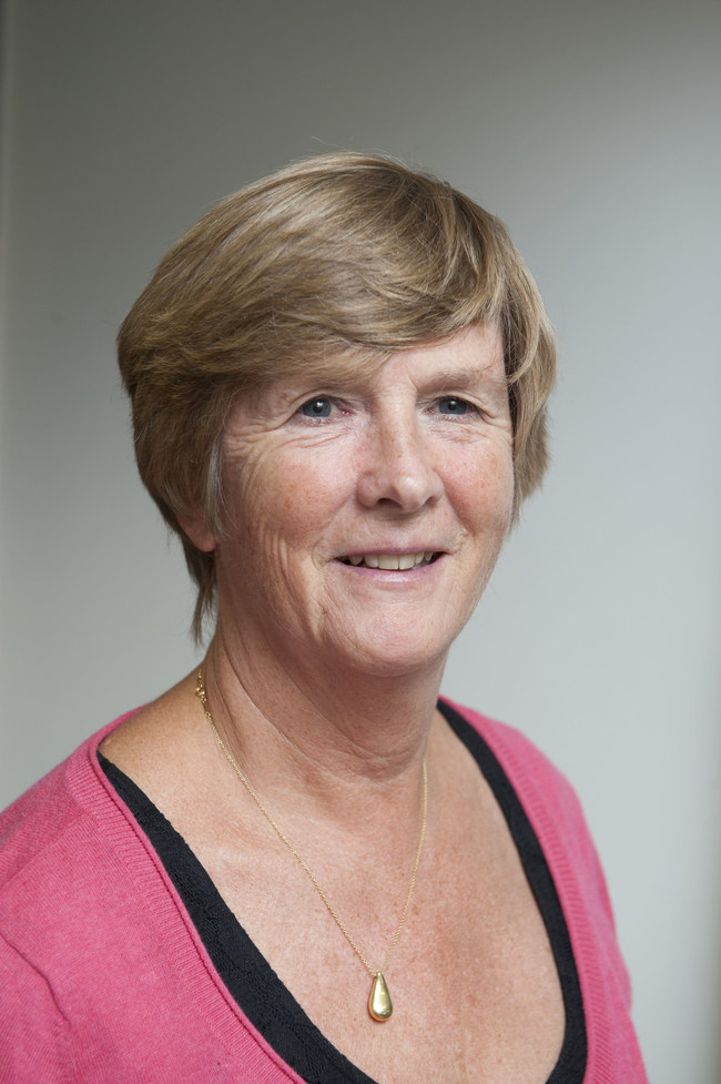 Professor Gail ter Haar, head of the Therapy Ultrasound team in the ICR's Division of Radiotherapy and Imaging, will lead the study.