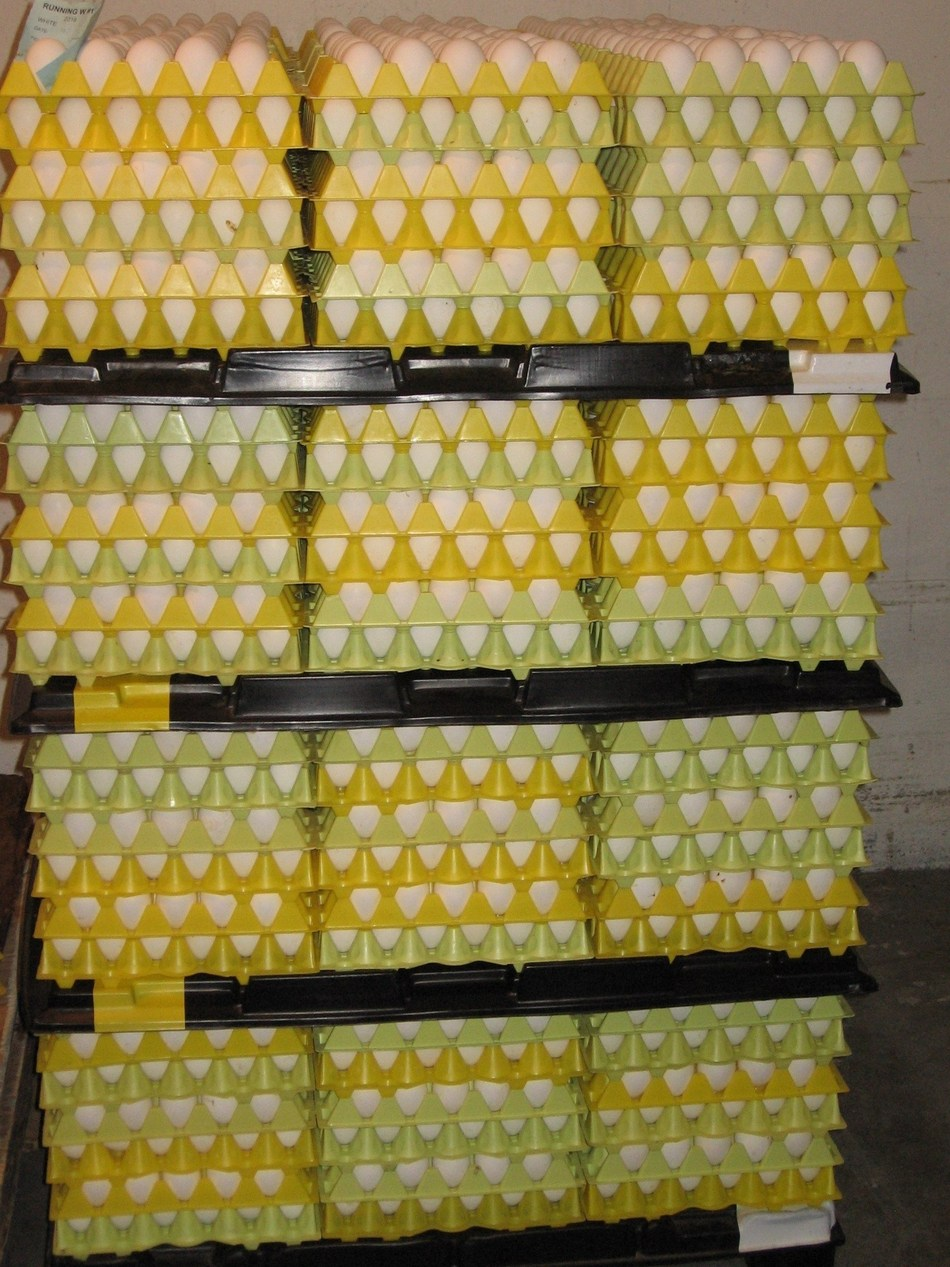 BC Egg farmers donate 25,000 dozen eggs a week to Food Banks BC. (CNW Group/B.C Egg)