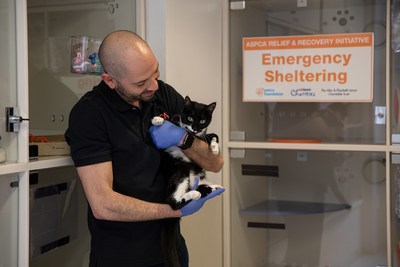 The ASPCA provides free emergency boarding for pets in New York City whose owners have been impacted by COVID-19.