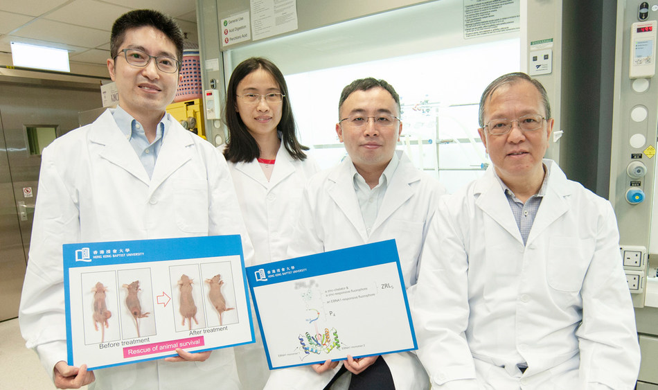 (From left) Dr Lung Hong Lok, Dr Jiang Lijun, Professor Gary Wong Ka-Leung and Professor Mak Nai-Ki developed a novel drug for the treatment of EBV-related cancers such as nasopharyngeal cancer (PRNewsfoto/HKBU)