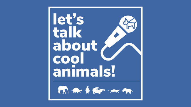 'Let's Talk About Cool Animals!' Podcast by Daniel Reitman and Mauro Carignano