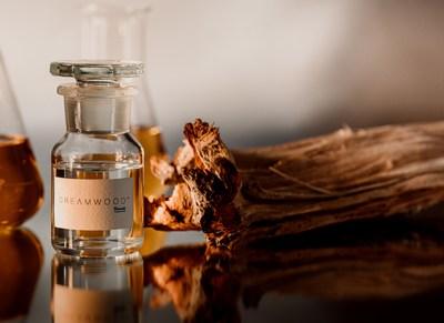 Dreamwood (TM) 带来温润的嗅觉体验,兼具美容功效和环保特性