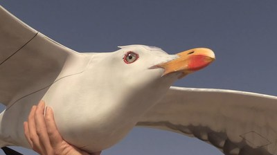 Unobtrusive Surveillance With Drone Bird