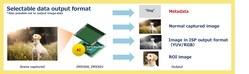 Data output format selectable to meet various needs