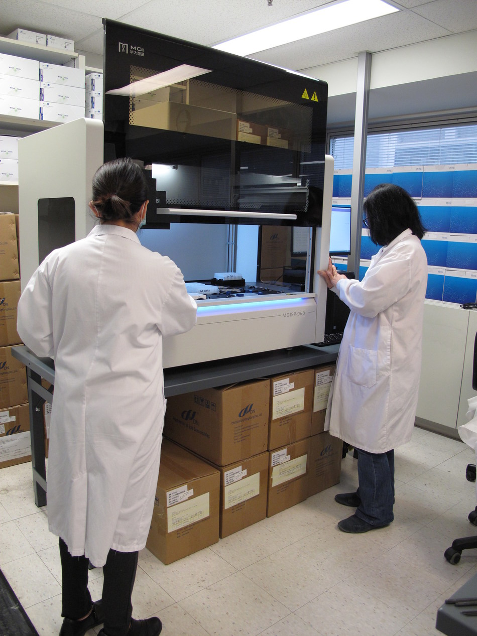 Technicians with MGISP-960 automated sample preparation and liquid handling system at Mount Sinai Hospital Microbiology lab