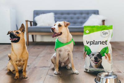 International plant-based dog food company v-planet is introducing its line of non-GMO vegan kibble in Thailand.