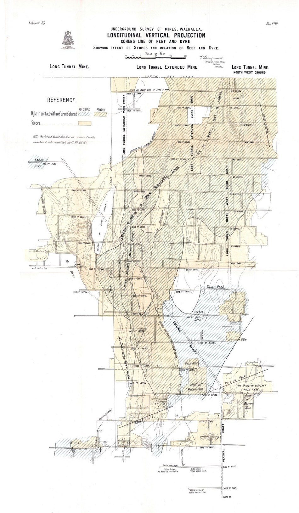Figure 1 Cohen's Reef Longitudinal Section (CNW Group/Fosterville South Exploration Ltd.)