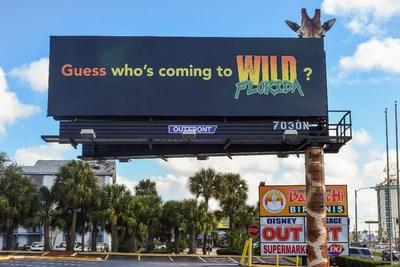 Custom Installation Category: Wild Florida, Credit: Jarrod Glick