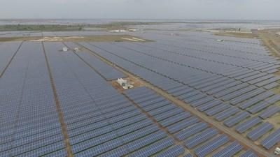 Módulos FV RISEN en operación en un parque solar de 500 MW en India