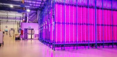 Yemoja Opens Sustainable Microalgae Production Plant