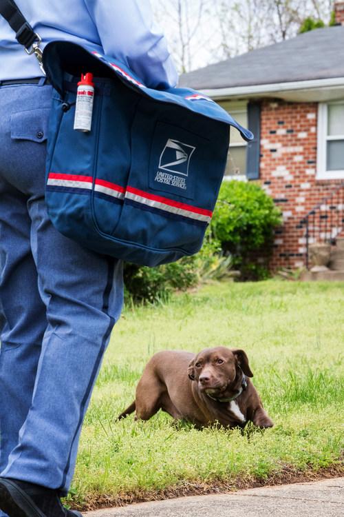 USPS 2020 Dog Bite Campaign runs June 14-20