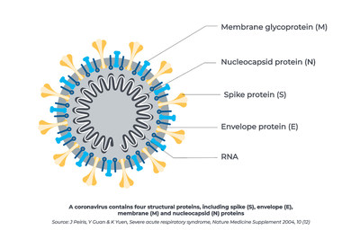 Diagrama do vírus SARS-CoV-2