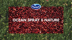 "Ocean Spray Launches New Marketing Campaign ""In Collaboration"" with Nature"