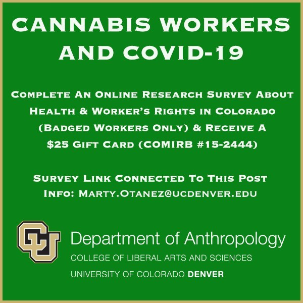 Study Image for cannabis workers and COVID-19 research
