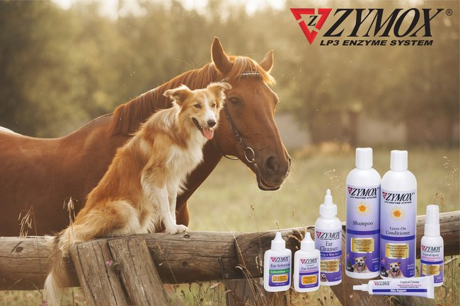 ZYMOX® for Small and Large Animals