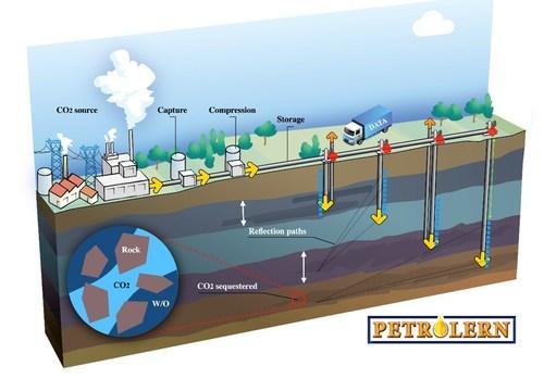 Petrolern LLC