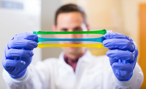 The hydrogel-based tough gel adhesive is flexible, strong, and stays attached to biological tissues even when wet. Credit: Wyss Institute at Harvard University