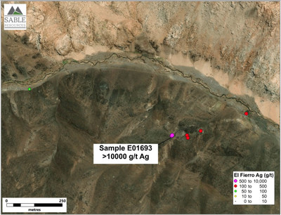 Figure 3. Distribution of received samples at Fierro Bajo target (CNW Group/Sable Resources Ltd.)