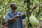 GODIVA Joins Earthworm Foundation To Promote Sustainable Change In The Cocoa Sector