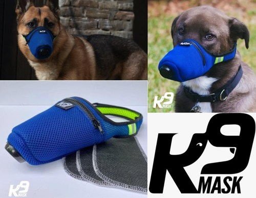 New Air Filter Mask for Dogs Protects Pets from Wildfire Smoke