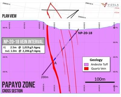Cross section through holes NP-20-18. (CNW Group/Vizsla Resources Corp.)