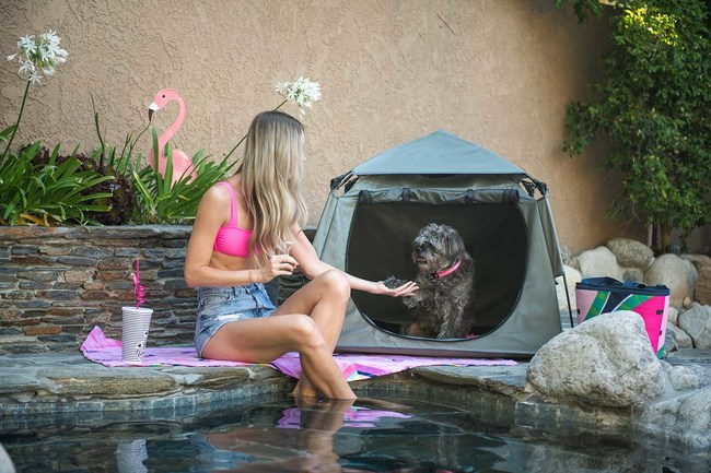 The most portable, compact, and durable playpen ever created for pets.