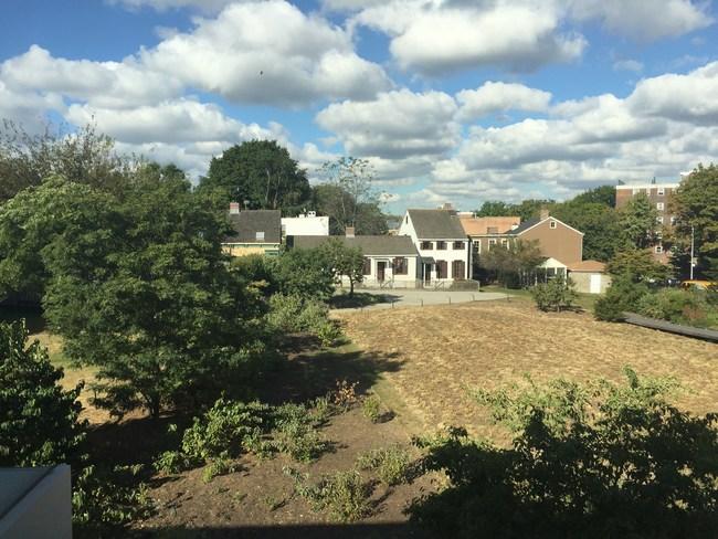 Weeksville's Hunterfly Road Houses