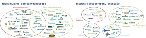 """The biostimulant and biopesticide industries are rapidly-growing, innovative landscapes. Source: IDTechEx report """"Biostimulants and Biopesticides 2021-2031: Technologies, Markets and Forecasts"""", www.IDTechEx.com/AgBio"""