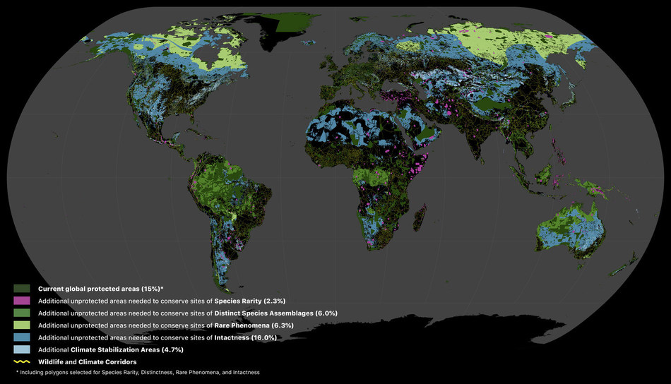 Using global biodiversity and carbon spatial data, the Global Safety Net identifies terrestrial areas where expanding protection to approximately half the Earth can reverse biodiversity loss and stabilize the climate. Shown here is a visualization of the Global Safety Net.