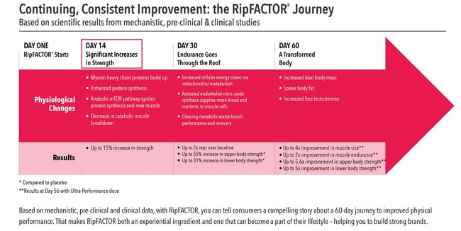 There really isn't anything else on the market today that drives significant gains in strength as early as two weeks, particularly with a dose less than one gram. RipFACTOR supports improved physical performance and faster results for a broad range of consumers. For formulators, the clinical work provides a broad range of tools to communicate the range of benefits to consumers - with messaging on physiological and performance improvements every step of the way.