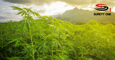 Cannabis Surety Bond Program ~ Surety One, Inc.