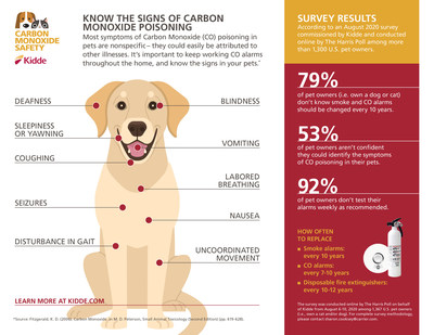 Understanding the Signs of Carbon Monoxide Poisoning in Pets