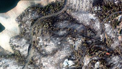 Wildfire damage in the North Complex Fire, California.