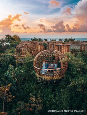 Embarque em uma viagem culinária inesquecível enquanto curte o clima de romance entre as copas das árvores no Terra, o restaurante exclusivo do resort. (PRNewsfoto/Hilton)