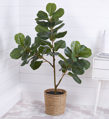 1-800-Flowers.com Faux Fiddle Leaf Fig Tree (PRNewsfoto/1-800-Flowers.com)