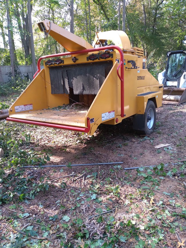 Tree service Long island land clearing and Emergency Tree removals Today