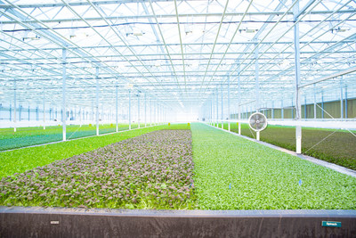 BrightFarms will use the funds to expand their sustainable indoor farming model using their proprietary BrightFarmsOS technology. They currently have indoor farms in Illinois, Ohio, Pennsylvania, and Virginia, with new facilities currently under development in North Carolina, Massachusetts, and Texas, and plans to reach most U.S. markets by 2025