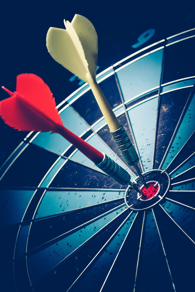 Bullseye is a target of business. Dart is an opportunity and Dartboard is the target and the goal.
