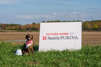 Nestlé Purina PetCare today announced a $550 million investment to build a new pet food manufacturing facility in Williamsburg Township, Ohio. Lupe, a Plott Hound-Dachshund mix, poses in front of the future home of Nestlé Purina PetCare's 23rd U.S. manufacturing facility, slated to begin operating in Williamsburg Township, Ohio in 2023.
