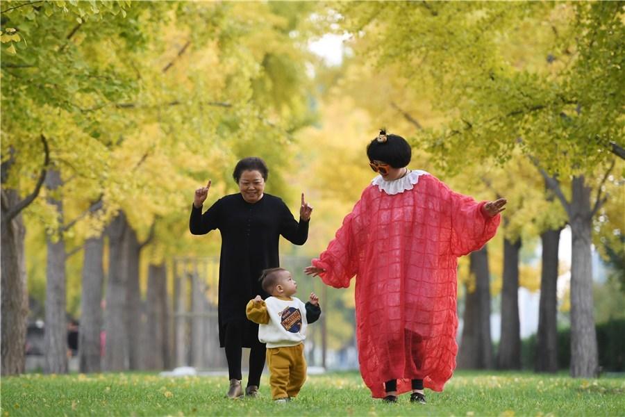A family enjoys the ginkgo trees in downtown Beijing. [Photo by WEI XIAOHAOCHINA DAILY]