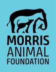 Morris Animal Foundation Seeks to Give Animals the Best Gift