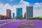 Tianjin's Binhai New Area models saline soil reclamation to world